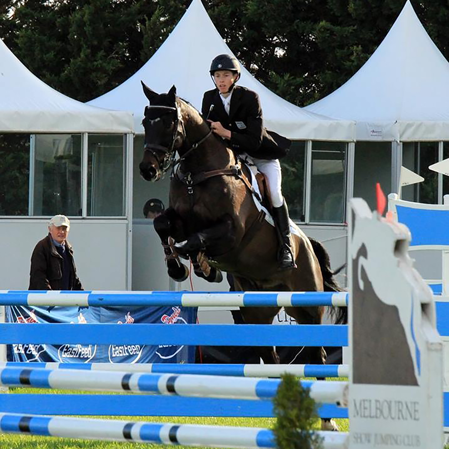 Sam Jeffree riding Jaybee Calypso show-jumping at Melbourne International Three Day Event