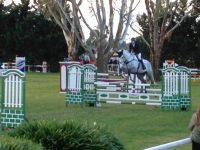 Sam Jeffree competing at Melbourne International Three Day Event 2018 - CCI* SJ with Koyuna Tactician