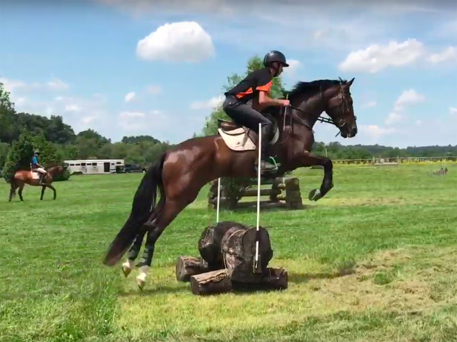 """Sam Jeffree rides Boyd Martin's 4yo """"Prinz Von der Ahe ACF"""" to a win in the Young Event Horse class at Maryland Horse Trials"""