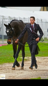 Sam Jeffree & Jaybee Calypso - trot up AI3DE