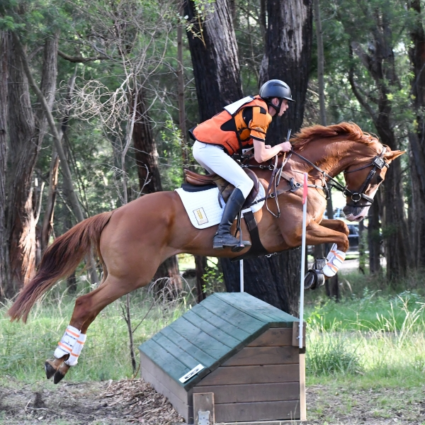 Sam Jeffree riding Susan Johnston's MP Worldmaster at Tonimbuk HT, March 2020.